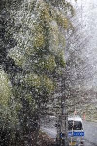 2010冬到来