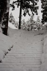 冬 慈恩寺 階段