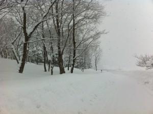 大江町の豪雪 小鳥山付近